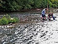 Two boys collecting stream insects (5029132461).jpg
