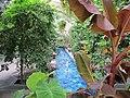 U.S. Botanic Garden in August (23168478294).jpg