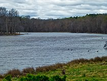 U.S. Fish and Wildlife Service Patuxent Research Refuge (33820939492).jpg
