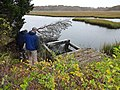 U.S. Fish and Wildlife Service staff assess clogged inlet at old culvert along Ray Peck Drive to be replaced (15534698224).jpg