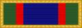 USA - TX State Guard Meritorious Unit Award.png