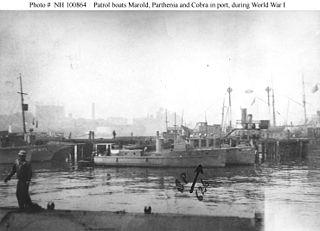 USS <i>Cobra</i> (SP-626)