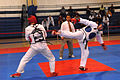 US Army 53525 Soldiers compete in Tae Kwon Do tournament for Warrior Country level.jpg