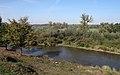Ulanów - rzeka Tanew - DSC00089 v1.jpg