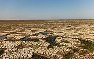 Uniek door eb en vloed steeds wisselend kweldergebied. Locatie, Noarderleech Provincie Friesland 21.jpg