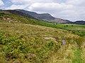 Upper Cwm Llechen - geograph.org.uk - 59693.jpg