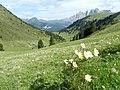 Val de Grelba - panoramio.jpg