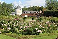 Valloires Abbey, botanical garden, roses, view to adjacent buildings.JPG
