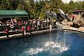 Vancouver Aquarium (5861612311).jpg