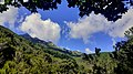 Vicinale del Tenditoio trekking Elba.jpg