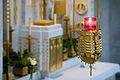 Vienna - Otto Wagner's St Leopold Church - 6824.jpg