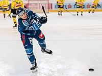 Vienna Capitals vs Fehervar AV19 -31.jpg