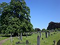 View across Welford Road Cemetery - geograph.org.uk - 953976.jpg