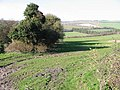 View across farmland, near Warren Bottom - geograph.org.uk - 363722.jpg