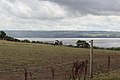 View across the Dee from Thurstaston - Heswall path.jpg
