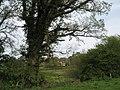 View from Fair Oak back towards house near Haben Farm - geograph.org.uk - 786840.jpg