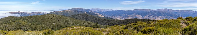 View north from Mt Richardson, New Zealand.jpg