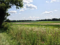 View of Green Pond Marsh looking southeast from Green Pond Road on July 31, 2014.jpg