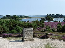 Viewpoint on the RSPB Arne reserve - geograph.org.uk - 1445832.jpg