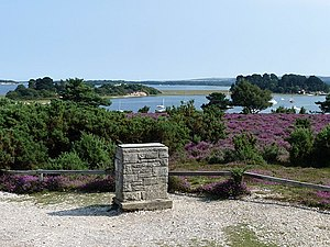 Arne RSPB reserve - Image: Viewpoint on the RSPB Arne reserve geograph.org.uk 1445832