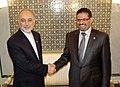 Visite de travail du Ministre des Affaires Etrangères de la République Islamique d'Iran (6963021884).jpg
