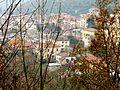 Vista sui tetti - panoramio.jpg