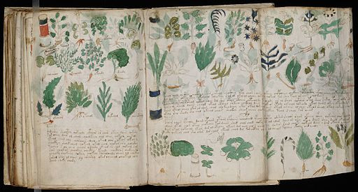 Voynich Manuscript (178)