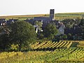 Vue depuis les vignes (Eguisheim) (2).jpg