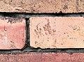 WH brick stamp Biala Podlaska.jpg