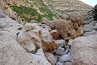 Wadi-Makukh-604.jpg