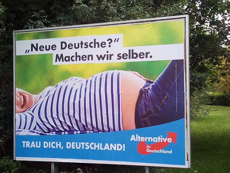 File:Wahlplakat AfD Bundestag 2017.jpg