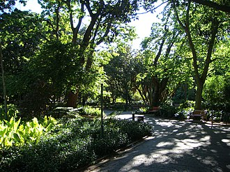Company's Garden - Walking in the Company's Garden