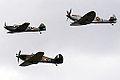 Warbirds (5102256247).jpg