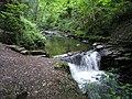 Waterfall in Cwmdu Glen - geograph.org.uk - 740621.jpg