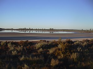 Salinity in Australia - Salinity damage in the wheatbelt region of Western Australia near Babakin.
