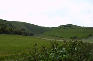 Uffington White Horse - White Horse Hill and Dragon Hill (right)