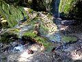 WikiProjekt Landstreicher Wasserfall Hinang 52.jpg