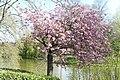 Wilhelminapark, Breda P1460802.jpg