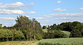 Willingale, Essex, England - Miller's Green view east to St Christopher's Church.JPG
