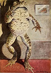 Wind in the Willows - Paul Bransom - Mr Toad standing.jpg