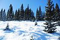 WolfCreek Ski Area.jpg