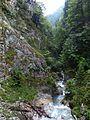 Wolfsklamm 4, Tirol, 2013.JPG