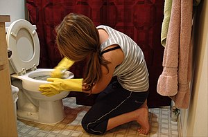 Woman cleaning toilets.