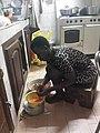 Women cooks.jpg