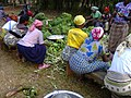 Women prepare a meal for a party in Uganda 02.jpg