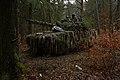 Woodland Camo 200128-A-NP687-1056.jpg