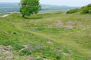Worthing - The backfilled remains of a flint mine shaft, one of about 270 mine shafts at Cissbury.  From around 4000BC, the South Downs above Worthing was Britain's earliest and largest flint-mining area.