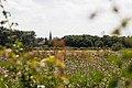 Wormwood Scrubs Park - panoramio (2).jpg
