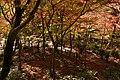 Zuihoji park14n4272.jpg