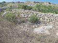 Zurrieq, Malta - panoramio (108).jpg
